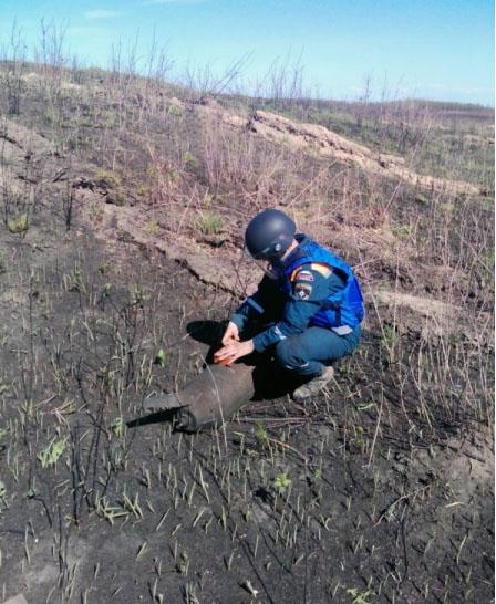 Полсотни противотанковых мин отыскали вАмурской области