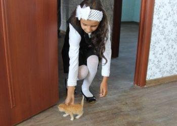 20 семей получили ключи от нового жилья в Чигирях