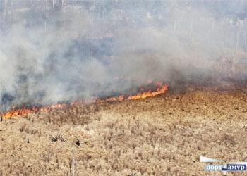 Особый противопожарный режим установили в 11 районах Приамурья